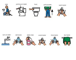 toilet visual